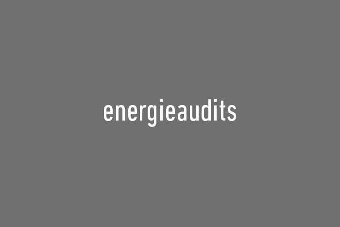 Referenz Energieaudits